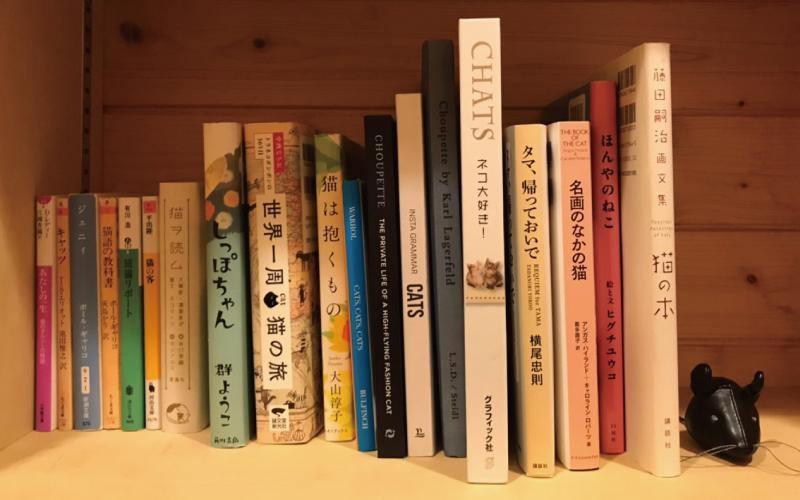 猫好きライターが厳選する「猫の本」4選【海外文学編】