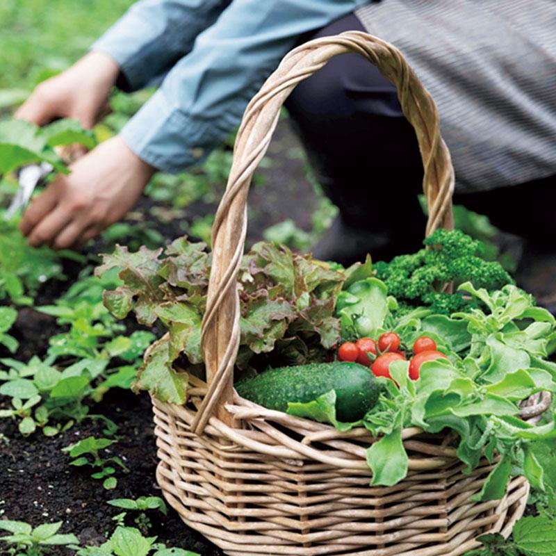 農業体験をメインに、那須の自然