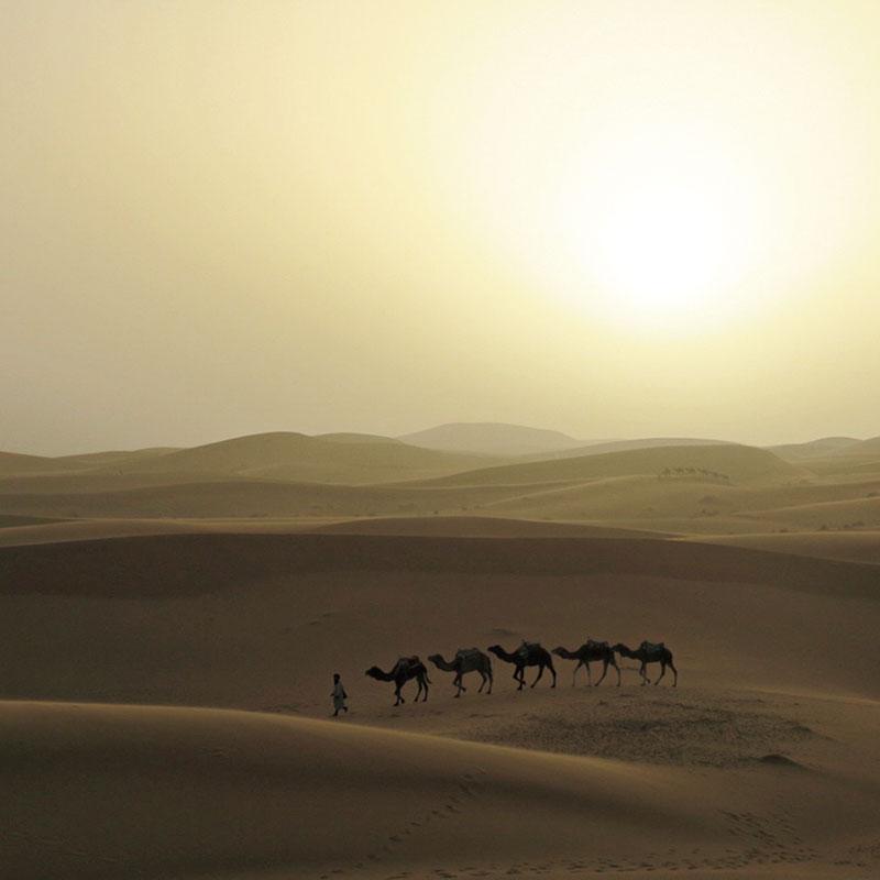 モロッコ 砂漠で朝陽待ちして撮影。