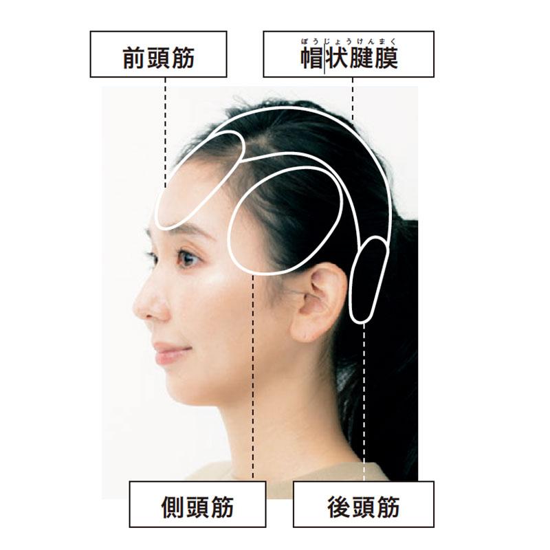 こり 頭皮 頭皮のコリはコレで解決!簡単なほぐし方とコリの原因を教えます