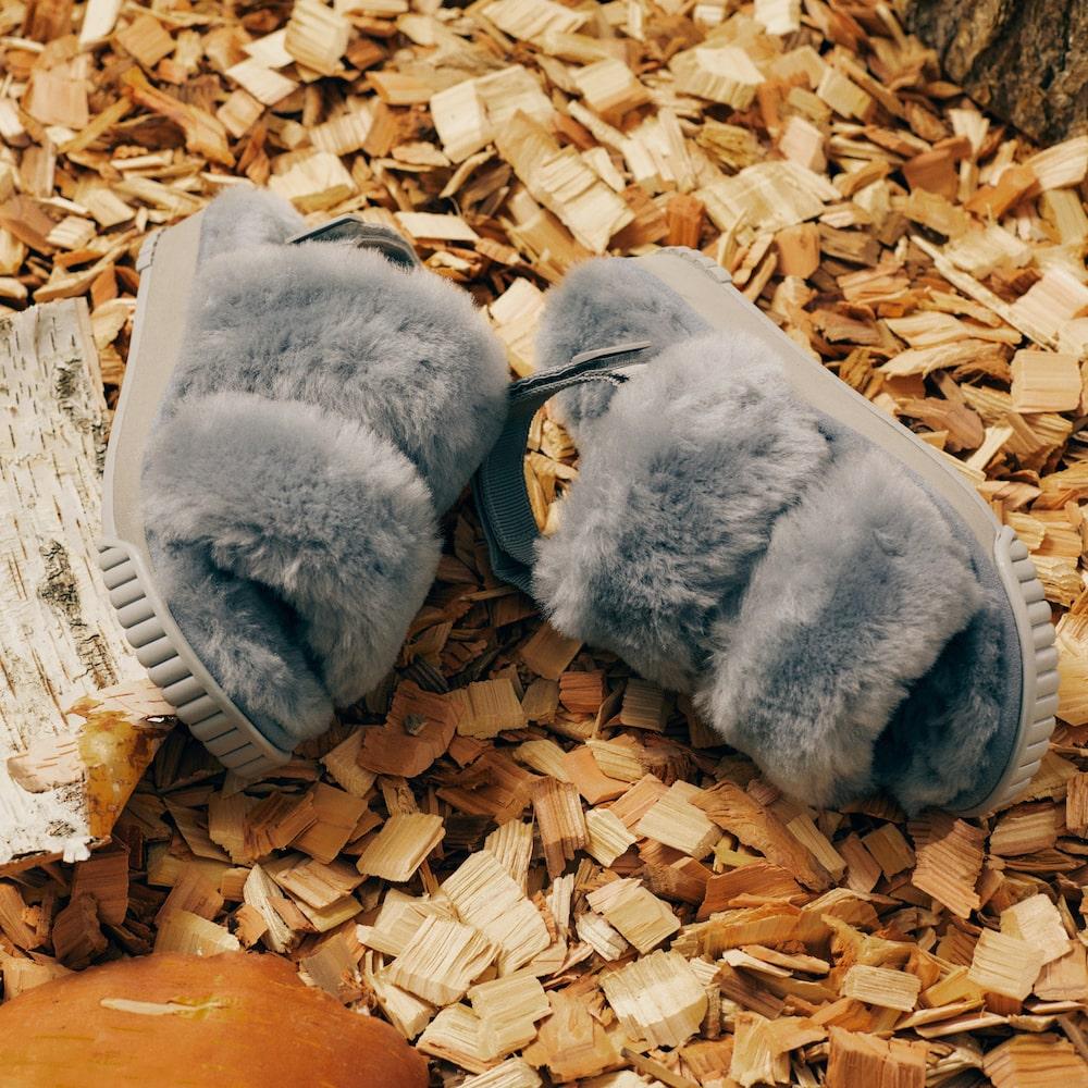 この秋新たに登場するのは、リア